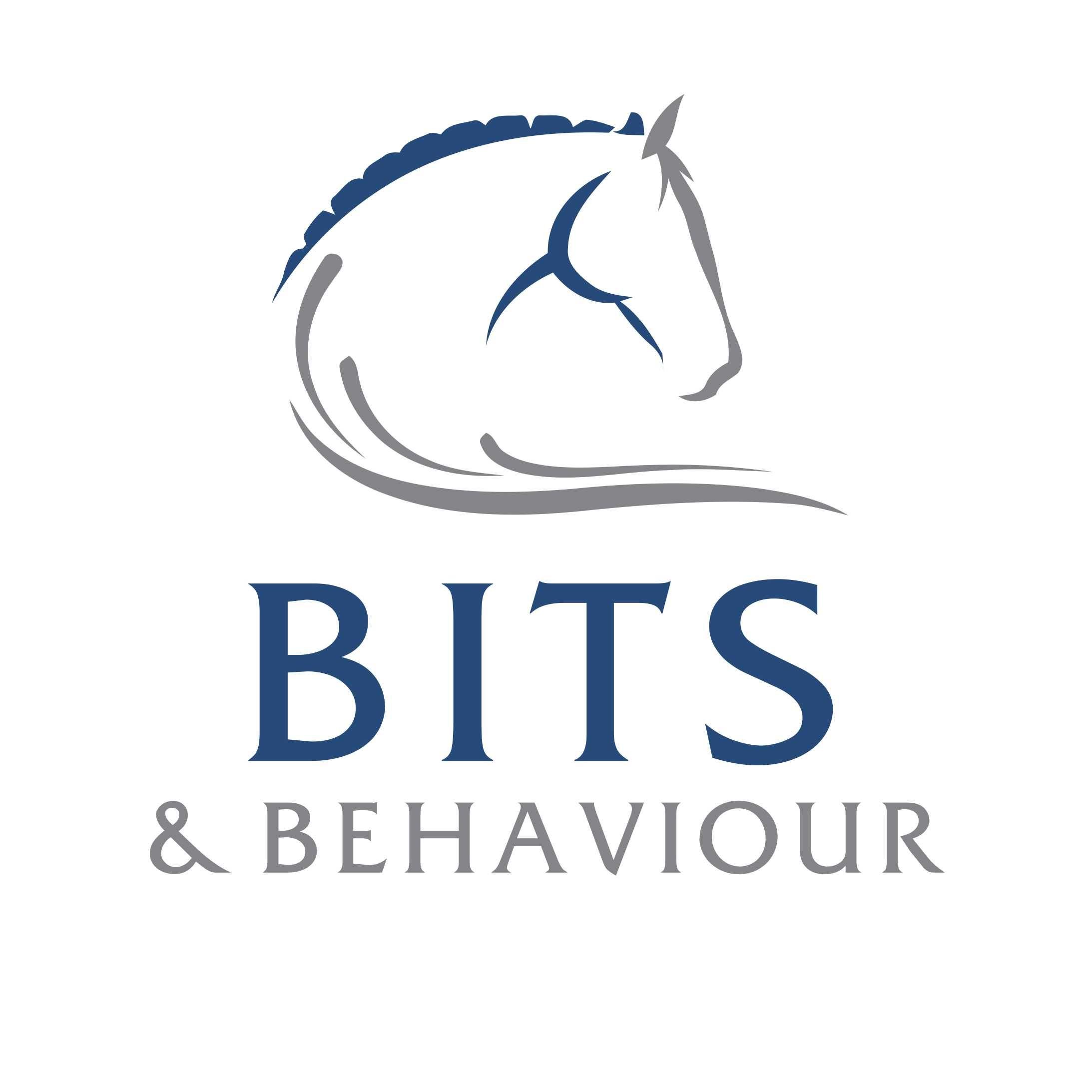 Laura Mckinlay- Bits & Behaviour
