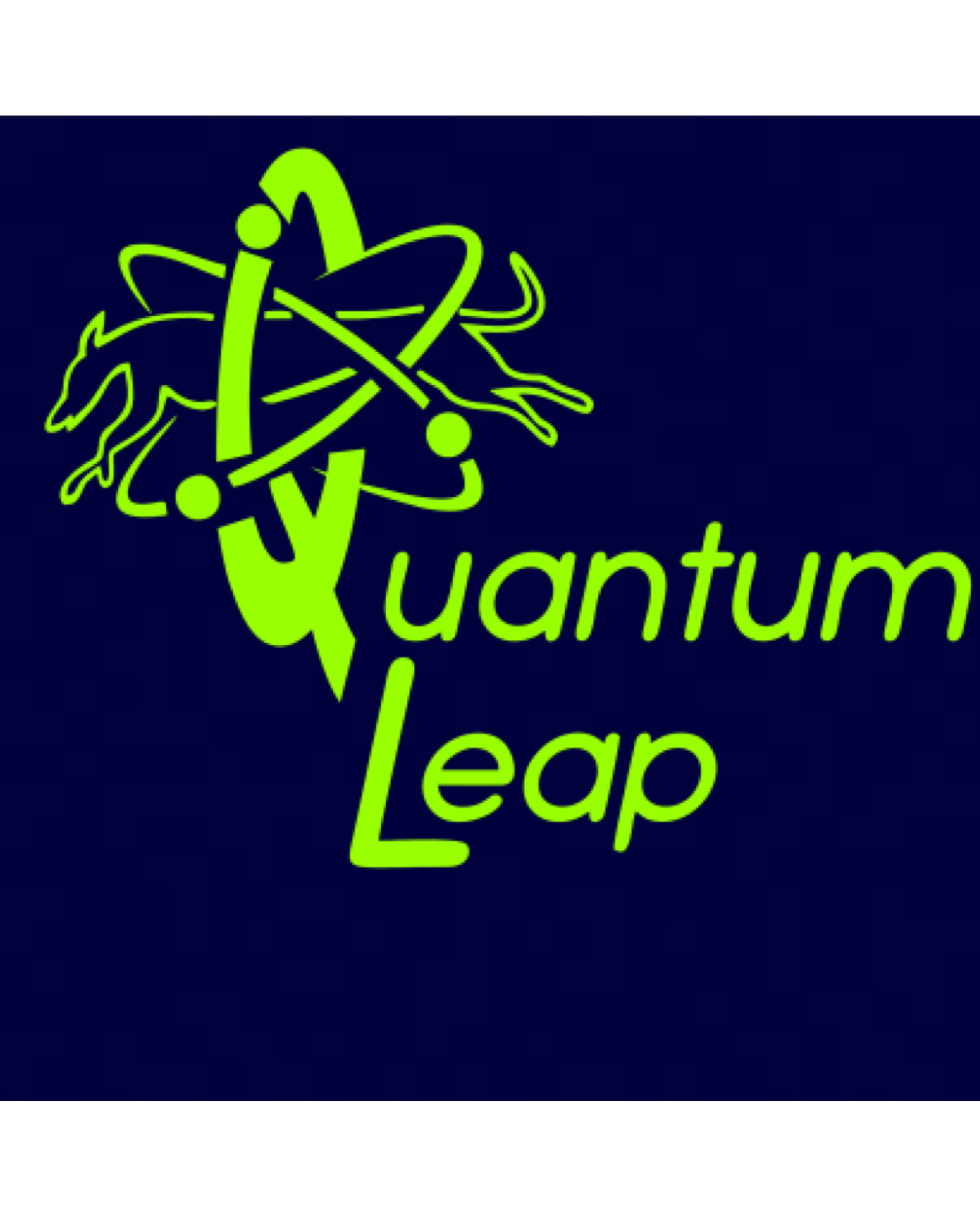 Quantum Leap Flyball – Belt Bag